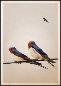 Bildverkstad Swallows