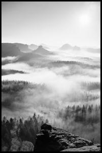 Bildverkstad Foggy Forest Black & White I - 50x70 cm
