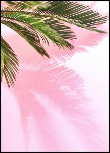 Lagervaror egen produktion Palm Leaf