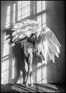 Lagervaror egen produktion Angel Women Posing II Poster