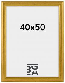 Västkusten Gold 40x50 cm