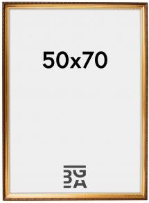 Galleri 1 Rahmen Abisko Gold 50x70 cm