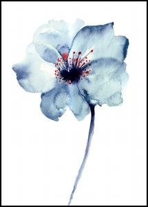 Lagervaror egen produktion Aquarelle Flower - Blue
