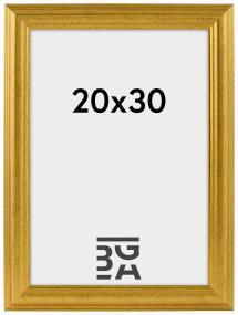Västkusten Gold 20x30 cm