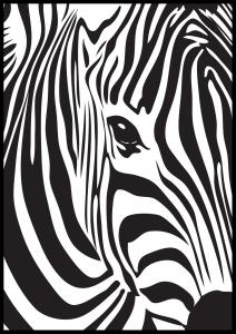 Bildverkstad Zebra
