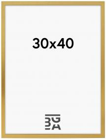 Galleri 1 Rahmen Frame Gold 30x40 cm