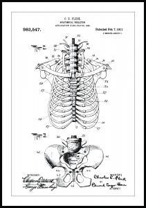 Bildverkstad Patentzeichnung - Anatomisches Skelett II Poster
