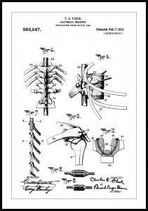 Bildverkstad Patentzeichnung - Anatomisches Skelett III Poster