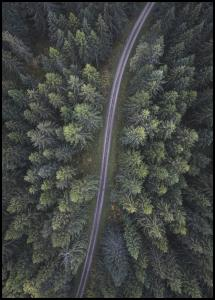 Bildverkstad Small road through the forest