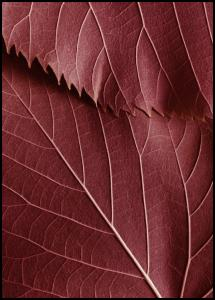 Lagervaror egen produktion Red Leaves
