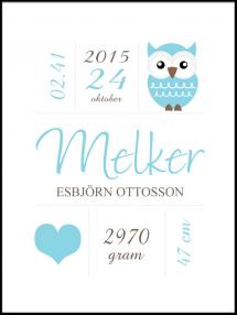 Personlig poster Owl Birth Poster Blue