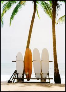 Lagervaror egen produktion Surf Boards Poster